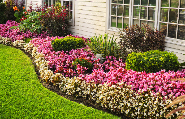 All Seasons Landscape Management Is Your Lawn And Landscaping Resource